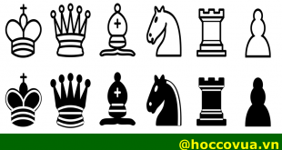 lịch sử cờ vua; học cờ vua