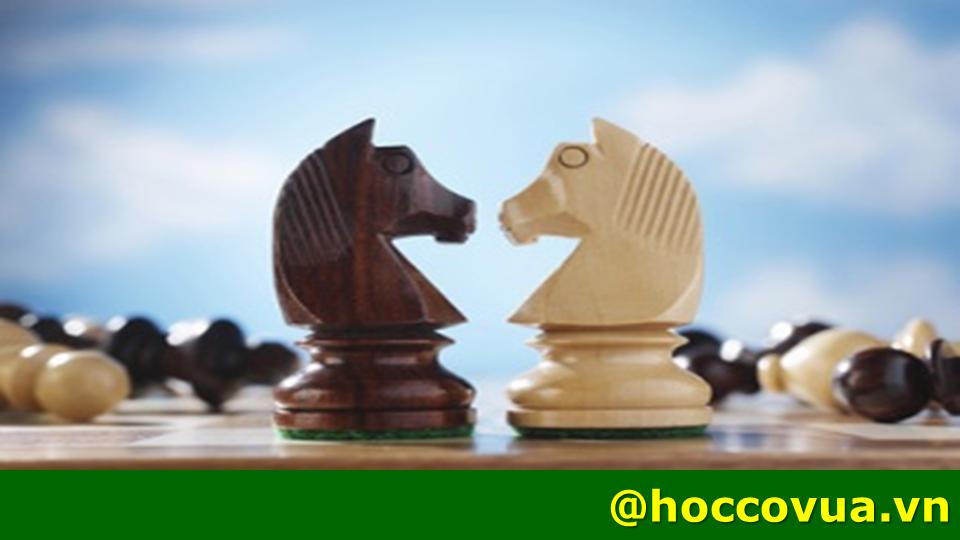 lợi ích của cờ vua; học cờ vua ván cờ cuộc sống Ván cờ cuộc sống - Sự hoàn hảo trong cái không hoàn hảo van co cuoc song su hoan hao trong cai khong hoan hao