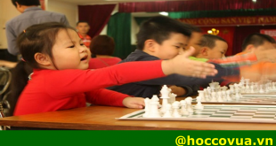 học cờ vua ở đâu tốt nhất
