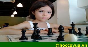 học cờ vua, địa chỉ học cờ vua